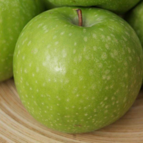 نهال سیب سبز گرنی اسمیت | نهال سیب سبز فرانسه